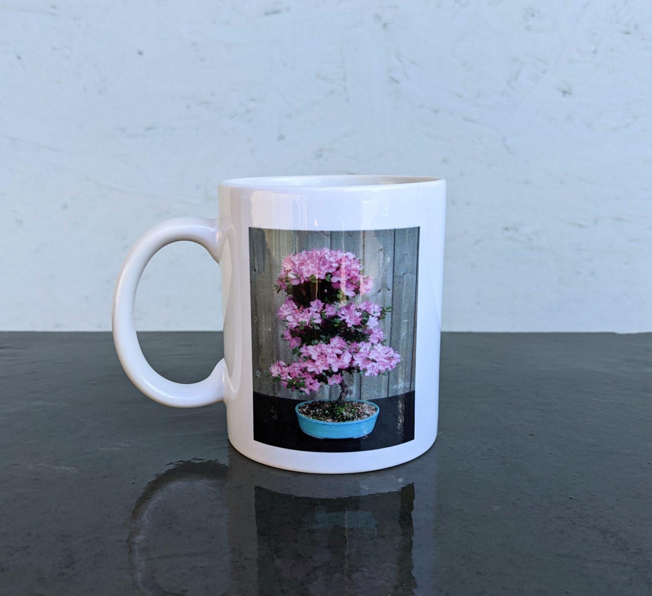 Devon Bonsai Mug – Satsuki Azalea