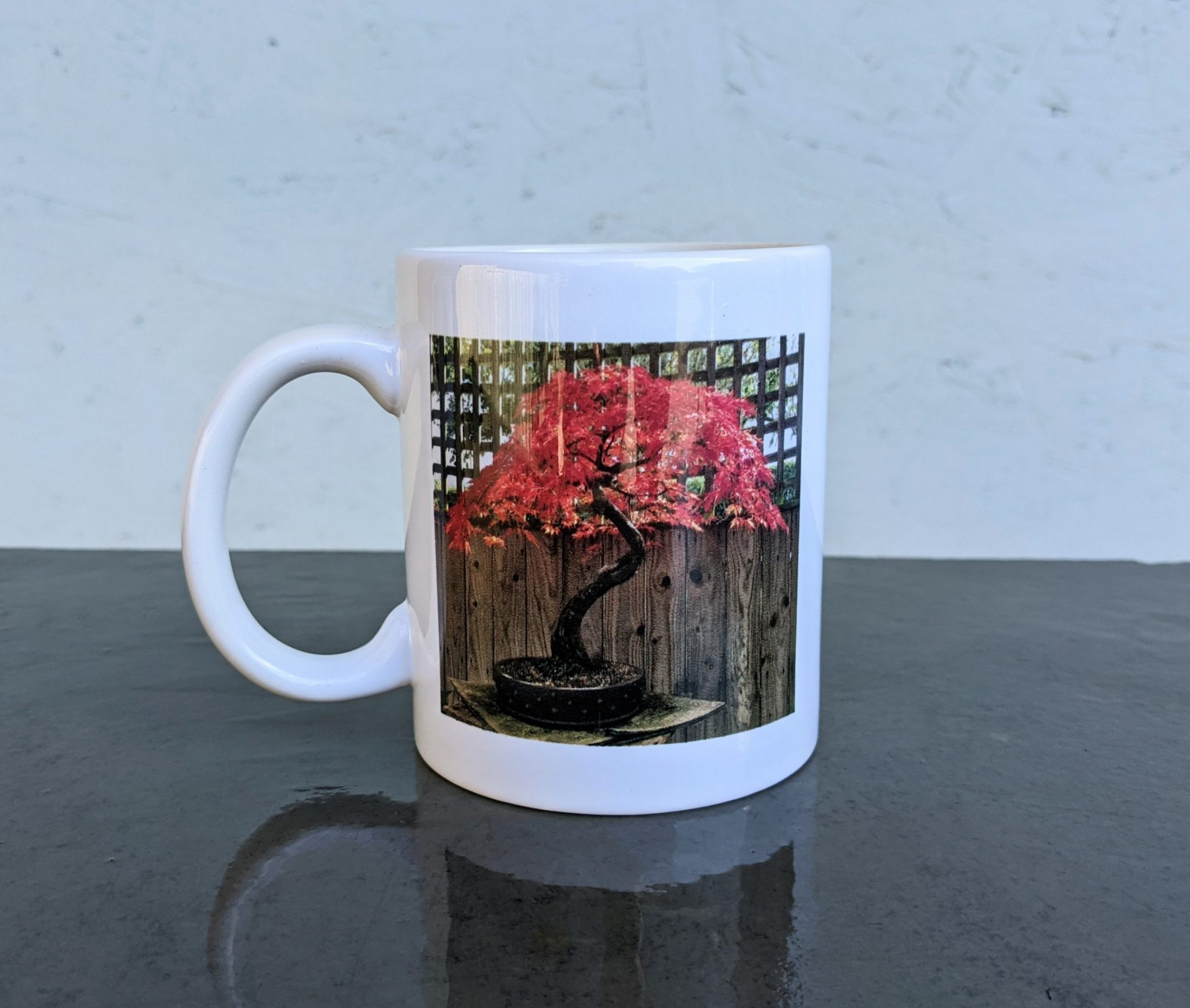 Devon Bonsai Mug